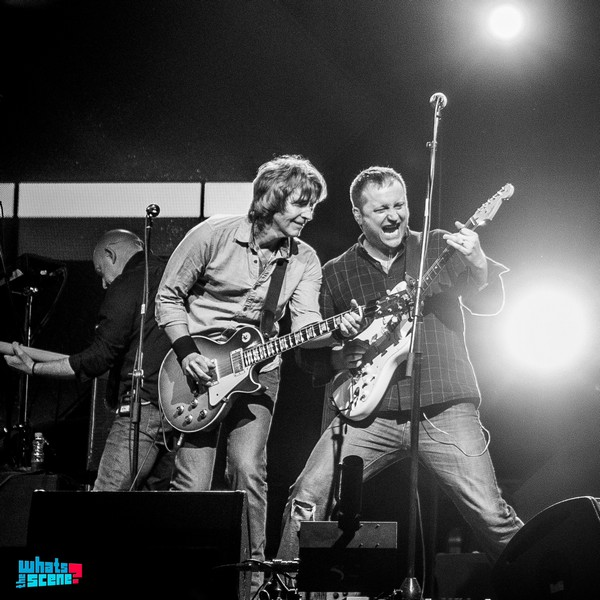 The Dire Straits Experience at Gurugram